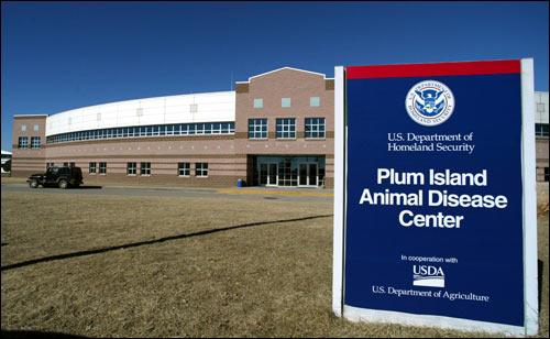 Plum-island, лаборатория 257